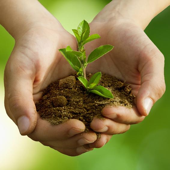 13 astuces de jardinage qui vous simplifieront la vie !